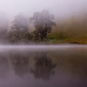 Ranu Kumbolo Lake by Yohanes Irawan - Landscapes Waterscapes ( ranu kumbolo, waterscape, landscape )