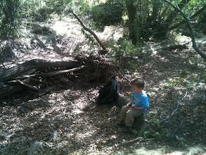 Photo: Eating Under an Oak