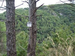 Photo: W dole jar, a dalej wzgórze 481, za nim Wielka Miska, jest to podejście do Głowy Węża (patrz wycinek #2)