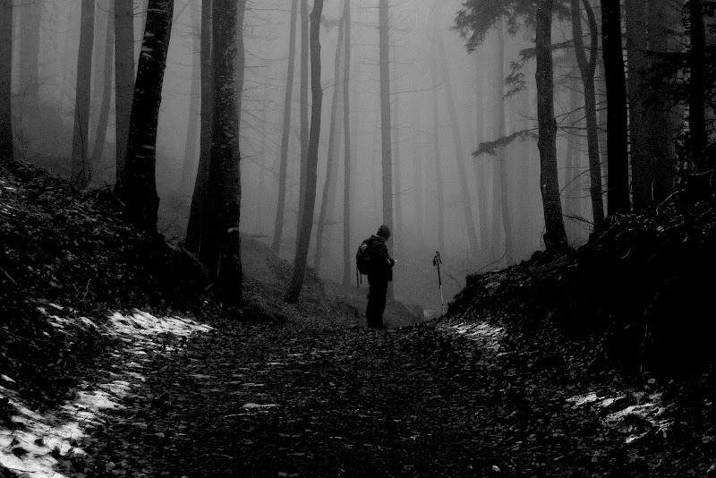 Perso nella selva oscura di Gian78K