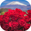 Beautiful flowers and roses pictures icon