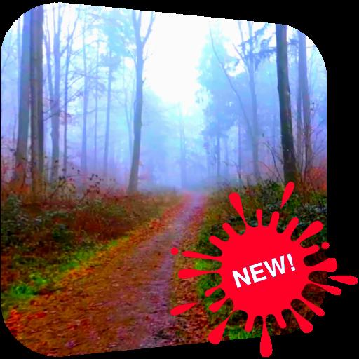 怖い森ビデオLWP 個人化 App LOGO-硬是要APP