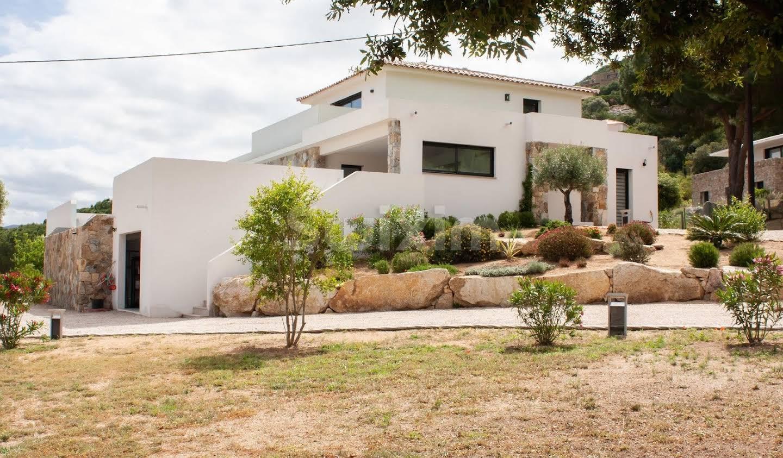 Maison avec piscine et terrasse Calvi