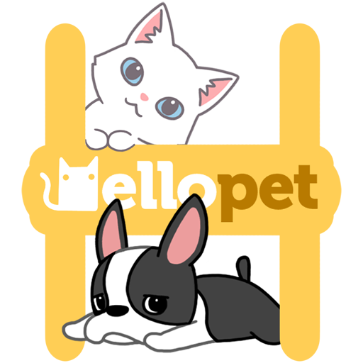Hellopet Cute Cats Dogs And Other Unique Pets Apps On Google Play