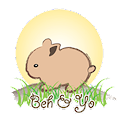 Behnyo.com icon