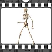 Skeleton Ragdoll,Run Challenge