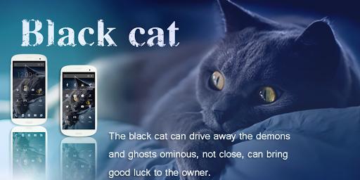 Black Cat-Solo Theme