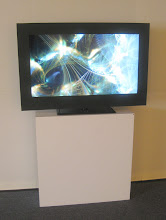 Photo: Clade 1 at Michael Berger Gallery, Pittsburgh 2010