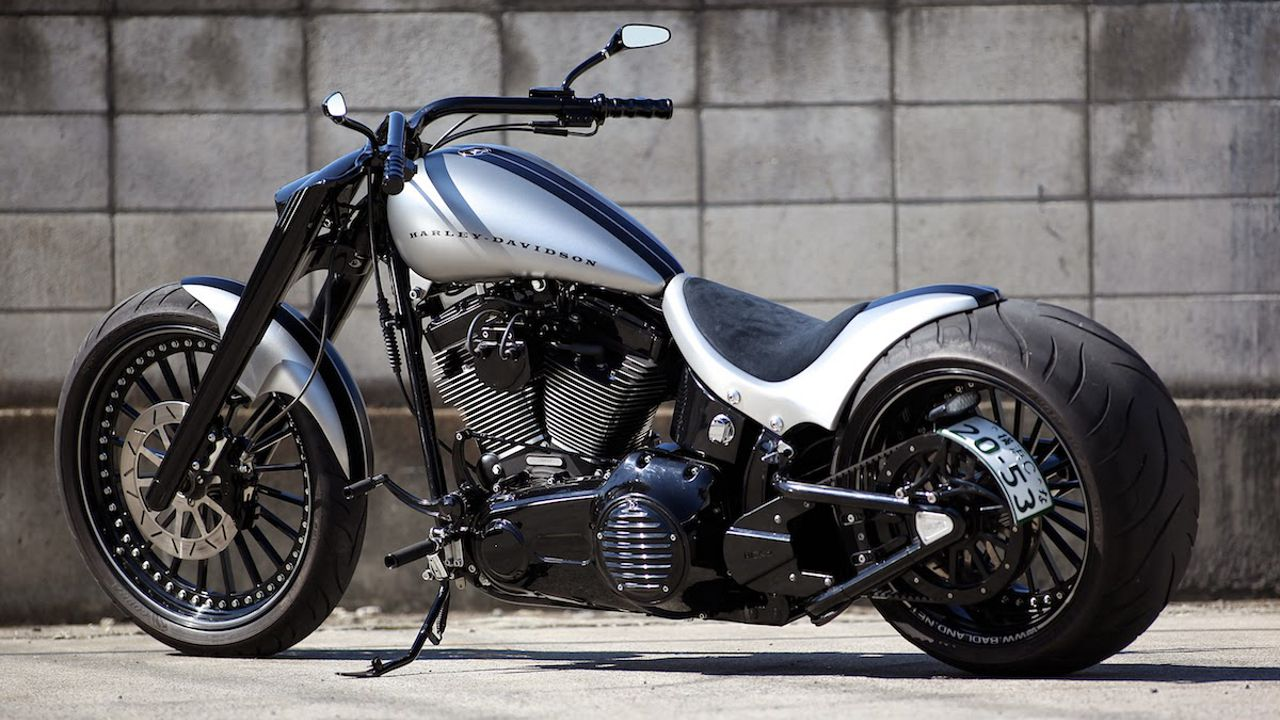 Harley Davidson Softail Cloudy Bay by Bad Land