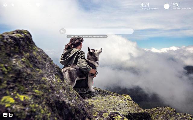 Siberian Husky Wallpaper HD