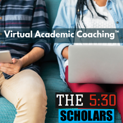VIRTUAL ACADEMIC COACHING