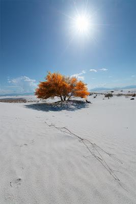 White Sands di Roberto M