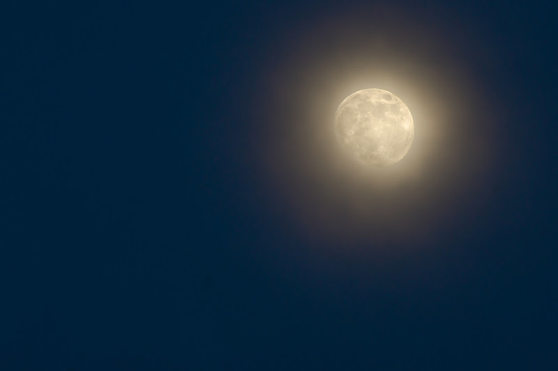 Luna di Yesica Nieves