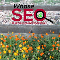 whoseseo - Follow Us