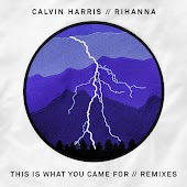 This Is What You Came For (Extended Mix) (feat. Rihanna)