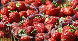 La feria comercial de productos frescos reunirá a más de 90 países.