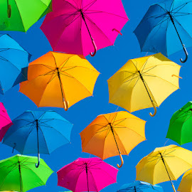 Umbrella Overhead by Autumn Wright - Artistic Objects Other Objects ( art, umbrella, pattern, abstract, colorful )