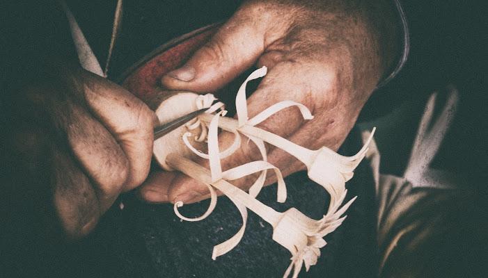Fior di betulla. di Matteo Faliero