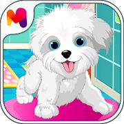 Puppy Pet Daycare - Pet Puppy salon For Caring‏