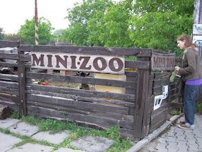 Photo: Mini állatkert a hotel mögött
