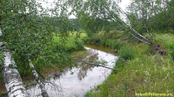 река Вязьма палатки