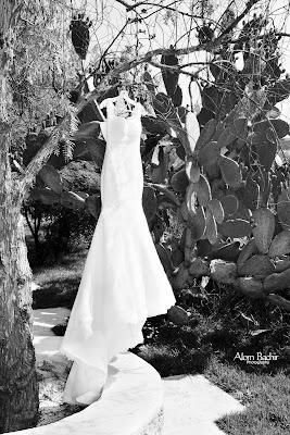 Fotógrafo de bodas Alom Bachir (alombachir). Foto del 23.06.2016