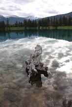 Photo: Jasper - Lac Beauvert