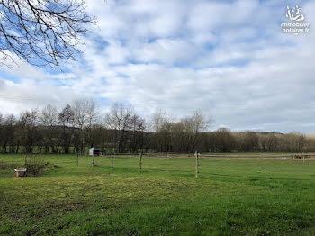 terrain à batir à Faverolles-et-Coëmy (51)