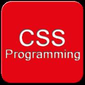 Basic Web Design Coding