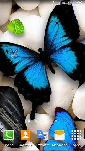 蝴蝶動畫壁紙