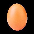 The Egg VS Kylie