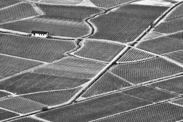Geometrie in pianura di BASTET-Clara