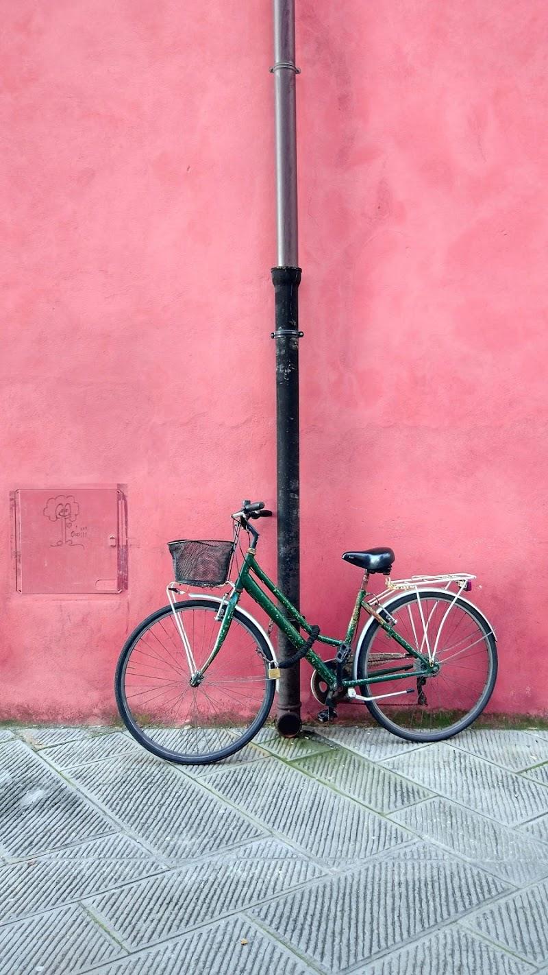 Pink Wall di francescagraffeo