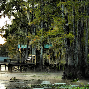 by Stacey Nagy - City,  Street & Park  Vistas ( caddo lake, bayou, swamp )