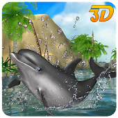 Real Dolphin Simulator