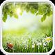 Green Spring Live Wallpaper (app)