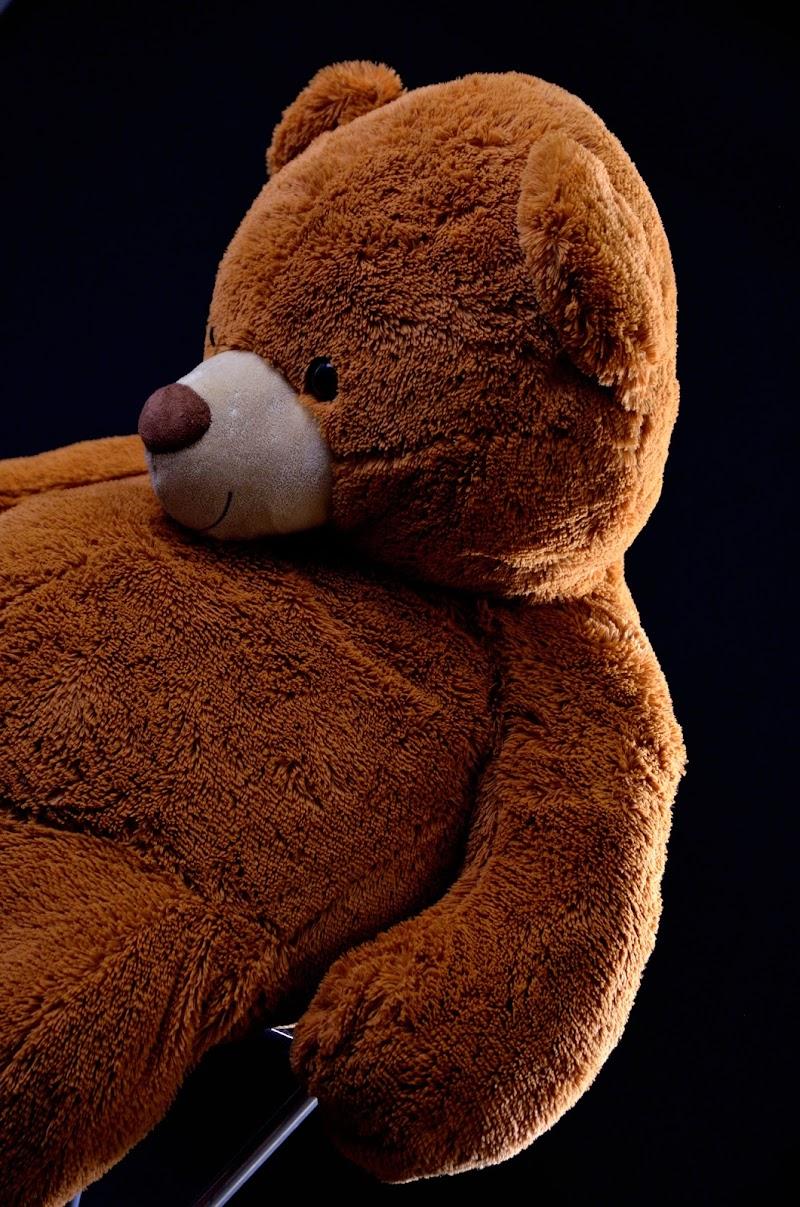Il modello Ted di Elisabetta Castellano