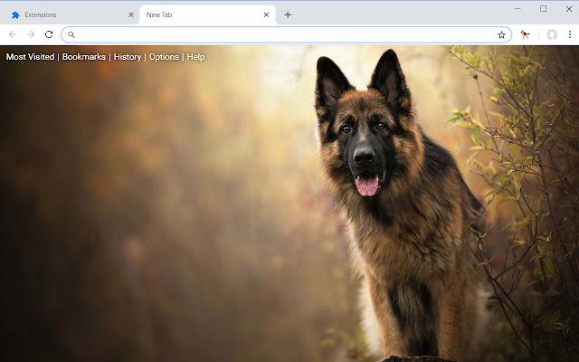 German Shepherd HD Wallpapers Dog Theme