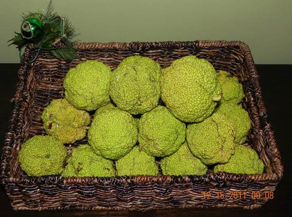 Osage Oranges Recipe
