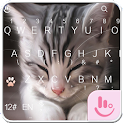 TouchPal Cats Keyboard Theme icon