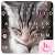 TouchPal Cats Keyboard Theme file APK for Gaming PC/PS3/PS4 Smart TV