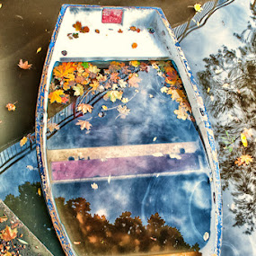 by Rory McDonald - Artistic Objects Other Objects ( boat, leaves )