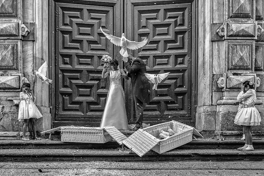 Fotógrafo de bodas Javi Calvo (javicalvo). Foto del 23.10.2019