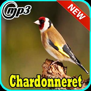 SERVATI MP3 GRATUIT CHANT CHARDONNERET TÉLÉCHARGER