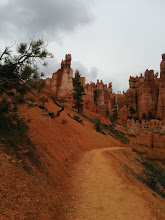 Photo: The trail winds through desperate pine trees, spindly hoodoos and crumbling rock walls.