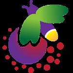 Firefly 0.1.1