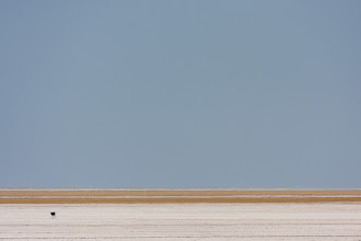 Photo: The black dot at the bottom left is an ostrich, out walking in the hazy heat of the Etosha salt pan.  This was a distant shot and unfortunately suffered a lot from the heat haze. The lens was at 360mm on a 1.6 crop = ~580mm effective.  #MinistractMonday , curated by +Tom McLaughlan #MinimalMonday , curated by +Olivier Du Tré