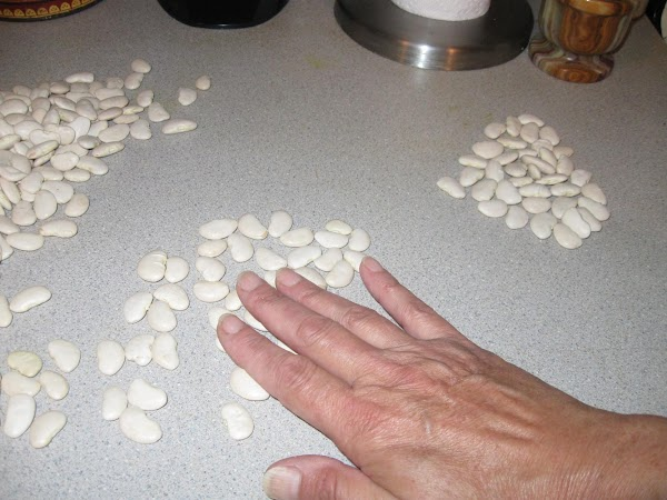 Sort beans; remove bad ones,rocks or other foreign materials.