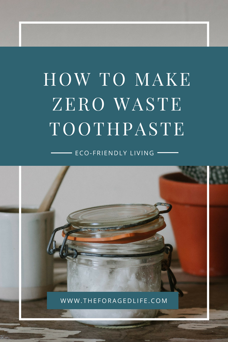 How to make Zero Waste Toothpaste | Eco-Friendly Living by The Foraged Life