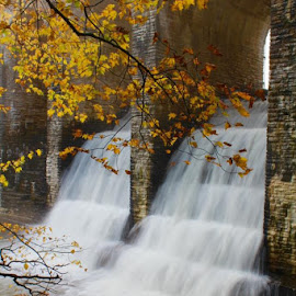 Wonderful water in the Fall by Brenda Evans - Buildings & Architecture Bridges & Suspended Structures